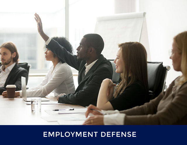 Employment-Defense